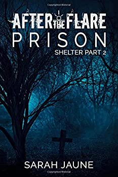 Prison - Book #2 of the After the Flare