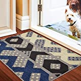 "Color&Geometry Indoor Doormat, Front Door Mat 32""x20"" Mat Waterproof, Non Slip Washable Quickly Absorb Moisture and Resist Dirt Rugs for Entrance…"