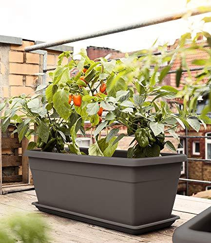 Emsa 518571 Pflanztrog My City Garden, zeitloser Blumentopf, 80 x 35 x 40 cm, frostfest, hohe UV-Beständigkeit, granit