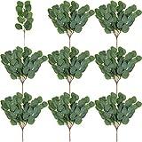 WILLBOND 40 Stück Gefälschte Eukalyptus Blätter Stängel Künstliche Silber Dollar Eukalyptus Blätter Pflanze für Hochzeit Brautsträuße, Blumen Arrangement, Herzstück, Haus Dekor, Handwerk Kränze