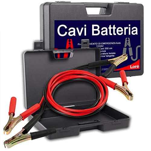 Cavi per Batteria Auto in Comoda Valigetta, Cavetti di Collegamento per Avviamento di Emergenza per la Macchina e Moto,Lunghezza 2,5mt, Pinze Isolate