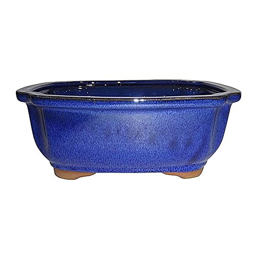 Brussel's 7' Lotus Bonsai Glazed Ceramic Pot (Medium, Blue)
