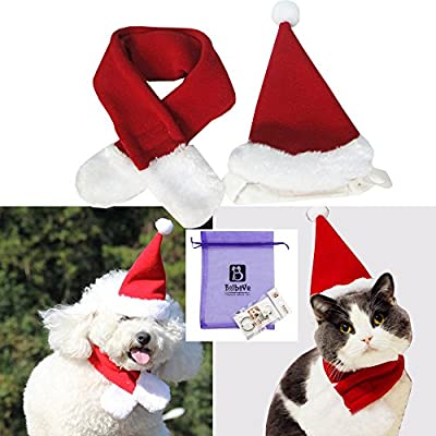 Bolbove Pet Adjustable Christmas Santa Hat + Scarf for Small Dogs & Cats Holiday Accessory