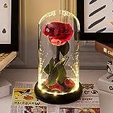 La Bella e la Bestia Artificiale Rosa Rossa Conservato a mano Rose fresca in vetro a cupola con Pacchetto regalo romantico per sempre il regalo per il giorno anniversario di matrimonio della mamma