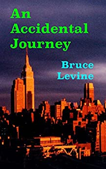 An Accidental Journey by [Bruce Levine]