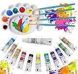Veczom Acrylic Paint Set 12 Colors Non Toxic Painting Supplies Set 4pcs Brush 1pc Palette for Rock Painting Canvas Ceramic Wood Professional Artists Beginners Students Kids Christmas (17 Paint Set)