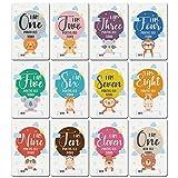 Wenyounge 12 Piezas de Pegatinas de Mes para fotografía de bebés, hito conmemorativo mensual para niños recién Nacidos, número de Tarjeta Conmemorativa, Accesorios para Fotos