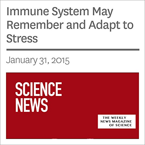 Immune System May Remember and Adapt to Stress audiobook cover art