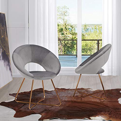 Duhome Modern Set of 2 Accent Chair with Golden Legs,Round Arm Living Room Cushion Velvet Armchair Home Furniture Grey