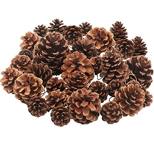 25 Piezas Conos de pino de Navidad Piñas natural Conos de pino de árbol de Navidad Piñas navideñas Adornos colgantes para el hogar Árbol de Navidad Decoración de otoño invierno,Tamaños surtidos