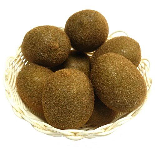 Gresorth 8 Stück Künstliche Lebensechte Kiwi Deko Gefälschte Früchte Obst Party Festival Dekoration