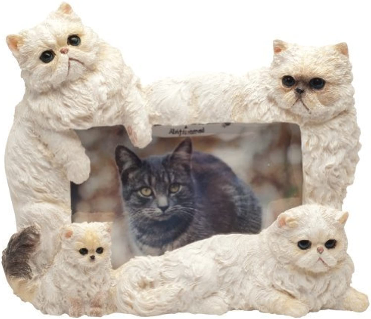 E&S Pets 352978 Large Cat Frames by E&S Imports, Inc