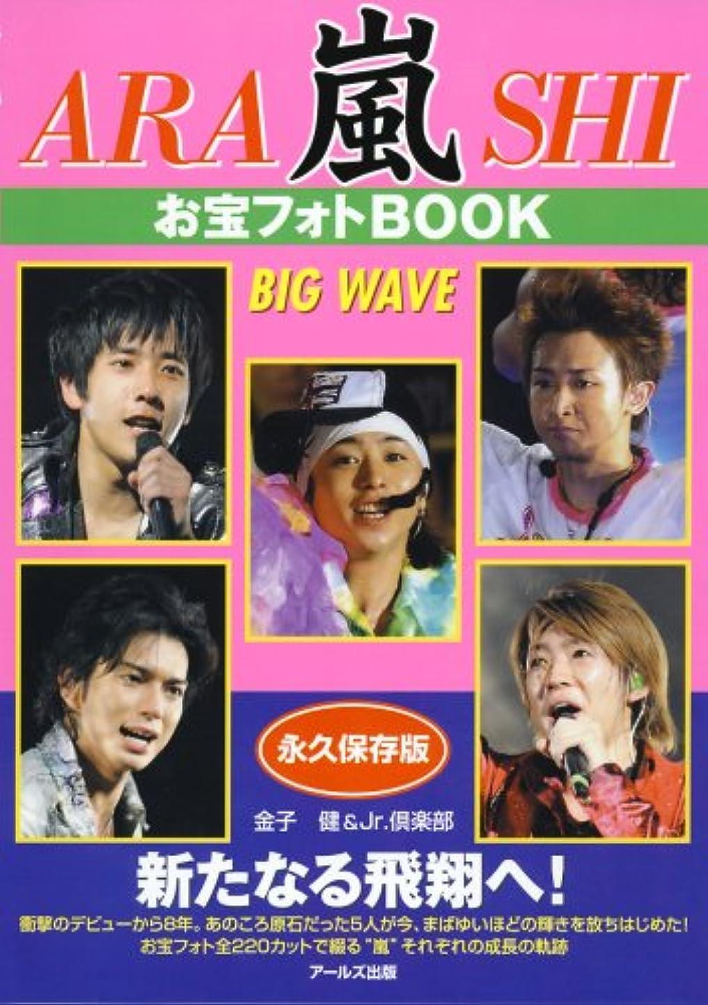 今不承認素晴らしい良い多くの嵐 お宝フォトBOOK BIG WAVE (RECO BOOKS)