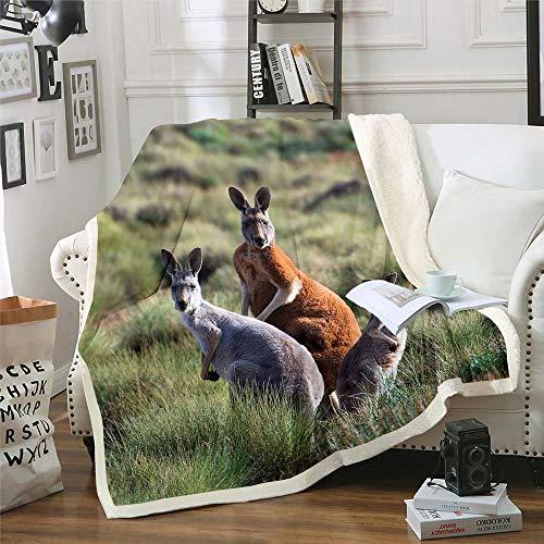 Vivid Life - Manta de tres canguros para sofá, cama, sala de estar, pasto, animales salvajes, franela para cama individual (152 x 203 cm)