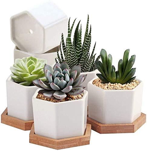 7WUNDERBAR Sukkulenten Töpfe Kaktus Pflanze Töpfe klein Übertopf Mini Blumentopf Töpfchen für Pflanzen Keramik mit Bambus Untersetzer 6.5cm Weiß 6er Set