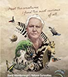 David Attenborough s Conquest of The Skies 35cm x 40cm 14inch x 16inch TV Show Waterproof Poster *Anti-Fading* 6WP/180260544