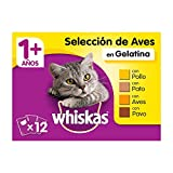 Whiskas Comida Húmeda para Gatos Selección Aves en Gelatina, Multipack (Pack de 13 x 4 bolsitas x 100g)