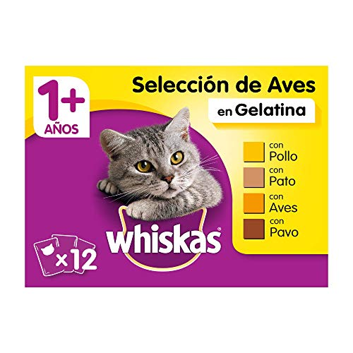 Whiskas Comida Húmeda para Gatos Selección Aves en Gelatina, Multipack (Pack de 13 x 4 bolsitas x 100g) ✅