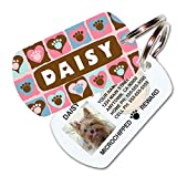 designer id tags for dogs