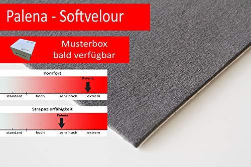 Steffensmeier Velours Teppichboden Palena Meterware | Auslegware für Kinderzimmer Wohnzimmer Schlafzimmer | Anthrazit, Größe: 400x400 cm