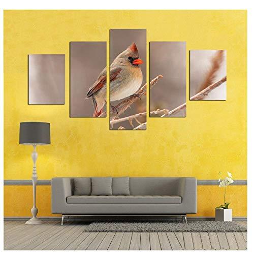kaxiou Canvas Foto's Modulaire muur Kunst Dier Kleine Vogel Met Rode snavel Schilderen Woonkamer Prints Poster Decor-30X40Cmx2 30X60Cmx2 30X80Cmx1 Geen Frame