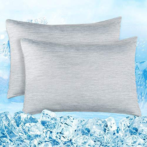 Elegear Funda de Almohada de Refrescantes de 2, Q-MAX 0,4 ARC-Chill Japonés Fibra de Enfriamiento, Funda Protege Almohada Suaves Transpirables con Cremallera Oculta (Gris,50*75cm)