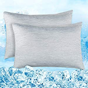 Elegear Funda de Almohada de Refrescantes de 2, Q-MAX 0,4 ARC-Chill Japonés Fibra de Enfriamiento, Funda Protege Almohada Suaves Transpirables con Cremallera Oculta (Gris,40 * 80cm)