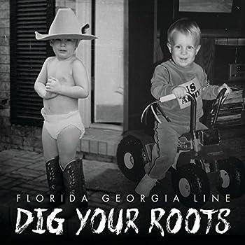 florida georgia line vinyl