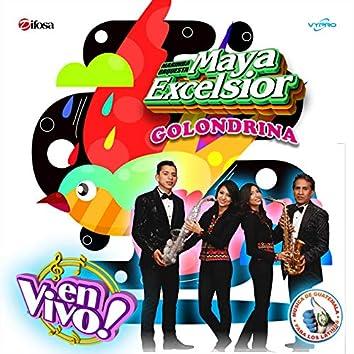 Golondrina. Música de Guatemala para los Latinos (En Vivo)