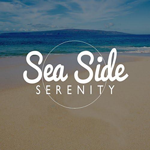 Ocean Beach Waves & Ocean Sounds Collection