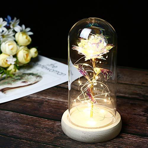 Mehrfarbig Rose mit Glas Lampenschirm, TINYOUTH Rose Kunstseide Sparkle Rose, 2m/6.6ft 20 LED Streifen Rose im Glas Schöne und Das Biest, AAA Batteriebetrieben für Hochzeit Valentinstag Weihnachten