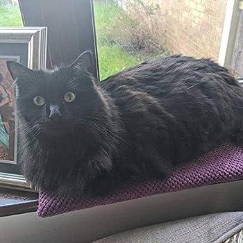 Coussin de fenêtre pour chat ou chaton - Matelas doux et chaud