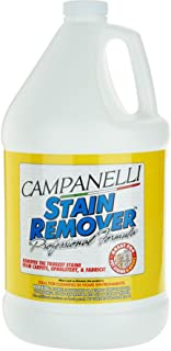 Campanelli`s Professional Formula Stain Remover - Pet Stain and Odor Eliminator for Dogs and Cats - Remove All Stains from Carpet, Hardwood, Linoleum, Tile and More (Liquid)