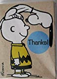Hallmark Peanuts Snoopy Charlie Brown Package 10 Thank You Cards Notes