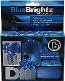 Brightz EverydayBrightz Creative Do It Yourself LED Fairy Light Accessory, Blue