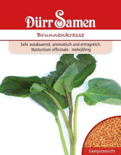 Kresse - Brunnenkresse von Dürr-Samen
