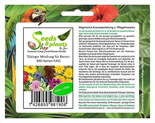 Pcs - 1000x Tübinger Mélange Pour Abeilles Eko-Samen Jardin Plant Fleur K351 - Seeds Plants Shop Samenbank Pfullingen Patrik Ipsa