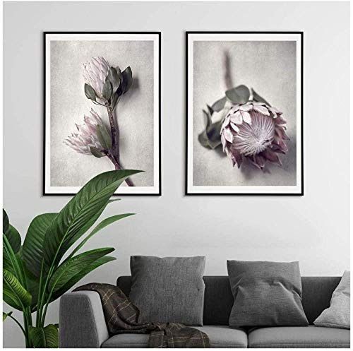 Protea Kunstdruck Nordic Flowers Poster Pflanze Leinwand Malerei Fotografie Wandkunst Bilder für Wohnzimmer Modern Home Decor