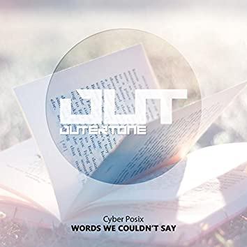 Words We Couldn't Say