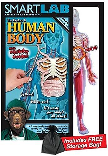 Smart Lab Squishy Human Body with Free Storage Bag by Squishy Human Body