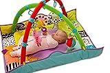 Taf Toys 11955 Spielmatte für Neugeborene, Mehrfarbig