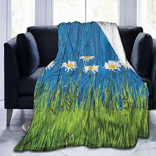 Manta mullida, fresca primavera hierba y margarita en la valla, impresión simple de estilo vintage, ultra suave, manta de bebé, colcha de dormitorio, cama TV, manta de 152 x 127 cm