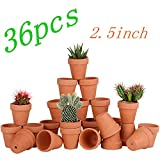 Bright starl 36pcs Small Mini Clay Pots, 2.5inch Terra Cotta Pot Clay Ceramic Pottery Planter, Succulent Nursery Pot/Cactus Plant Pot, with Drainage Hole, for Indoor/Outdoor Plants, Crafts, Wedding