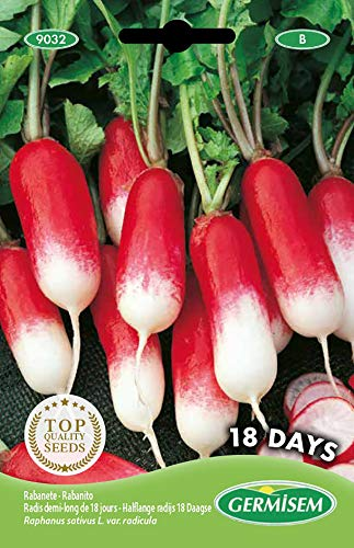 Germisem 18 Days Semillas de Rábano 10 g