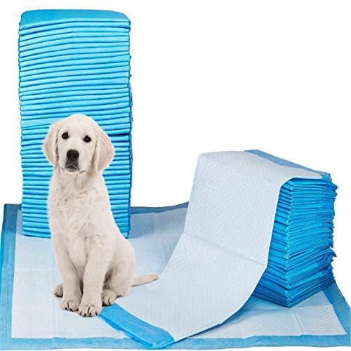 ditan Almohadillas de Entrenamiento para,Mascotas Almohadillas,Perros toallitas de Entrenamiento para,Cachorros empapadores de adiestramiento paraentr enamiento toallitas pañales,Espesar,Una Vez