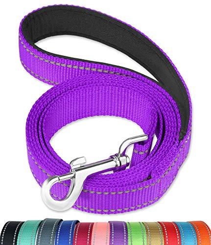 FunTags Reflektierende Hundeleine mit weich gepolstertem Griff für das Training, Spazierengehen, für große und mittelgroße Hunde, 2,5 cm breit, Violett