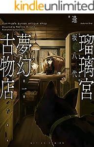 瑠璃宮夢幻古物店 1巻 表紙画像