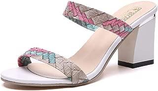Womens Open Toe Mules Low Heel Sandal Slippers Summer Casual Dress Shoes