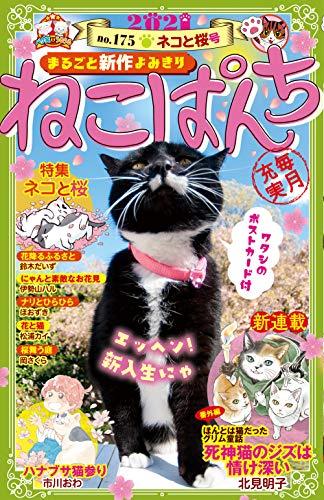 ねこぱんち No.175 ネコと桜号 (にゃんCOMI)
