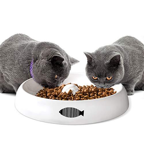Yangbaga XL Katzennapf aus Keramik für mehrere Katzen geeignet Futterschüssel Heimtierbedarf Katzenfutter Wassernapf Schüssel (Ø 28cm)